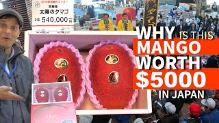 Video Japanese Mango sold for $5000 - but WHY? ★ ONLY in JAPAN MP3, 3GP, MP4, WEBM, AVI, FLV April 2019