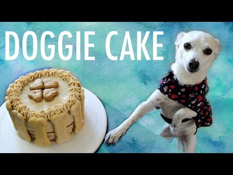 How To Make A Cake For A Dog - Dog Birthday Cake Recipe