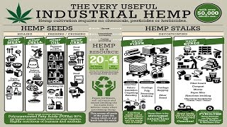 "Industrial Hemp Solutions for the World: Excerpt from Documentary: ""Bringing It Home"""