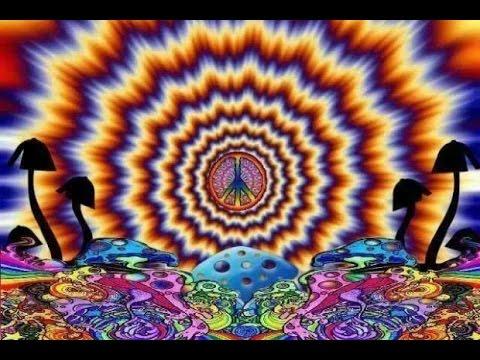 Video Magic mushrooms || Psychedelic 3D Visual Progressive Trippy Music Mix download in MP3, 3GP, MP4, WEBM, AVI, FLV January 2017