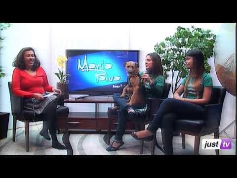 Feira de Adoção de Cães e Gatos de Suzano e O Cachorrinho Ted - Maria Paiva - JustTV - 04/06/13