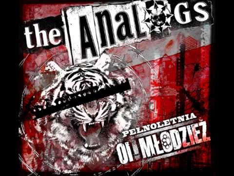 Tekst piosenki The Analogs - Tygrys po polsku