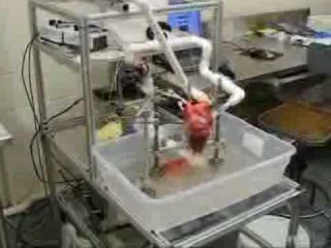machine that keeps beating