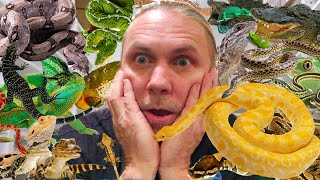 $7500 TO FEED ALL MY REPTILES EVERY WEEK!! | BRIAN BARCZYK by Brian Barczyk
