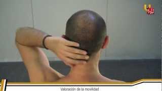 Fisioterapia UMH: Músculo Infraespinoso