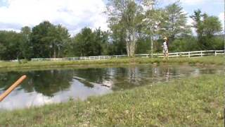 Video Largemouth Bass Fly Fishing With Mice / Mouse MP3, 3GP, MP4, WEBM, AVI, FLV Mei 2019