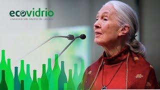 Premio de Ecovidrio a Jane Goodall