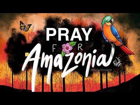 FIRE ON THE AMAZON | #prayforamazonia