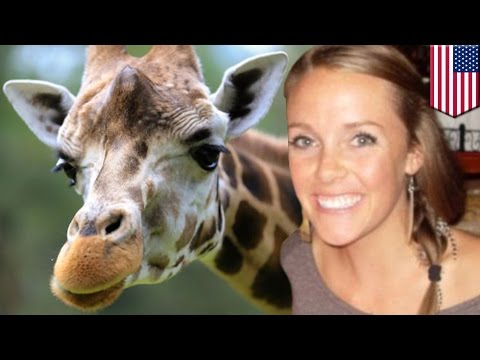 pourquoi la girafe a-t-elle un long cou