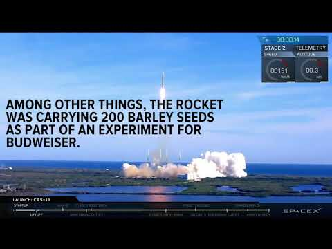 SpaceX 1st: Recycled rocket soars with recycled capsule, Budweiser barley seeds