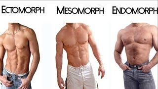 The Somatotype Myth: Ectomorph Mesomorph Endomorph