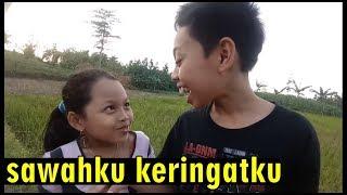 Video Tilik Sawah hasil Jerih Payah (Dimas dan Hajar Pamuji) MP3, 3GP, MP4, WEBM, AVI, FLV Februari 2019