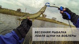 Весенняя рыбалка. Ловля щуки на воблеры [FishMasta.ru]