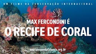 A Natureza está Falando | O Recife de Coral
