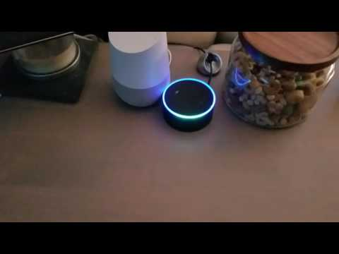 Amazon Echo  Google Home infinite loop