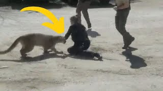 Man Is Viciously Attacked By Strange Creature In His Driveway by Did You Know Animals?