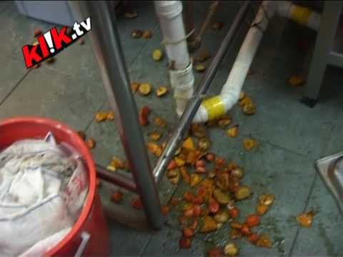 Blooper: Crazy chef drops food!!!