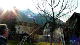 #291 Schneiden im Garten 2011 - Apfelhochstamm Wildmauser 2v6