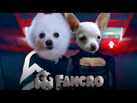 Criminal - Cover Perros (видео)