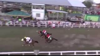Horse Race Peoples Stadium DigiNet/Old Masters Triple Crown Mile May 26, 2019