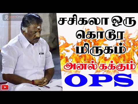 Video Sasikala is a ruthless animal - says OPS - 2DAYCINEMA.COM download in MP3, 3GP, MP4, WEBM, AVI, FLV January 2017