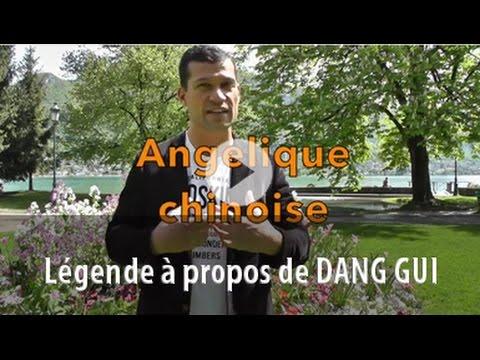 FLASHENNONG - Dang Gui l'angélique chinoise