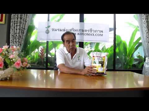 โรคพืช ไว้ใจเรา โคโค-แมกซ์ KOKOMAX