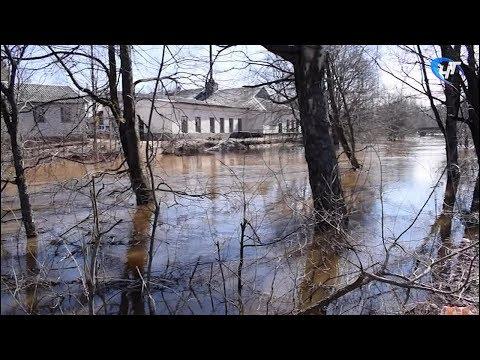 За сутки количество подтопленных домов в Крестцах удвоилось