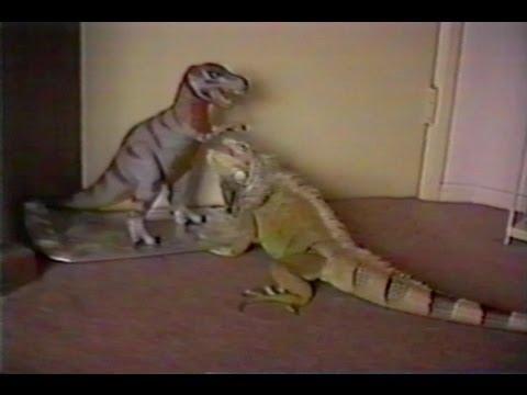 godzilla vs tiranosaurio: