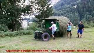 Romantische lustige Bergbauern Heuernte Zell am See hay harvest, Zell am See, Austria