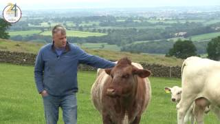 Meet Paul, farmer from Barrackend farm