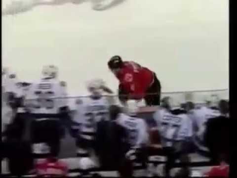 Жёсткая драка в Хокее (видео)