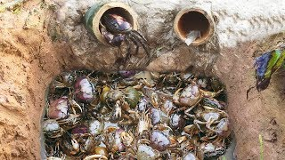 Video Amazing Smart Boy Deep Bamboo Hole Catch A Lot Of Crabs In Cambodia MP3, 3GP, MP4, WEBM, AVI, FLV Mei 2019