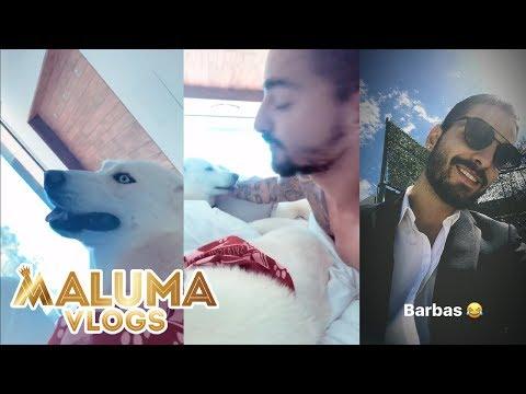Maluma esta en medellin y lo primero que hace es pasarla con sus bebés Bonnie y Clyde | MalumaVlogs