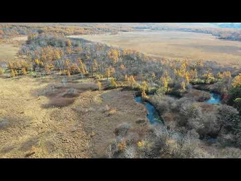 紅葉の戦場ヶ原と湯滝