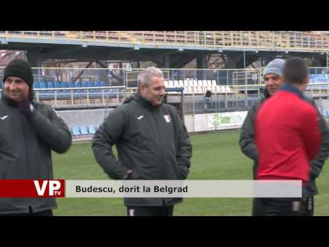 Budescu, dorit la Belgrad