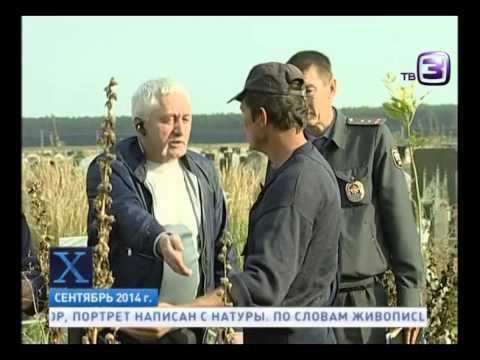 Исчез вместе с могилой  Х версии  Другие новости - DomaVideo.Ru