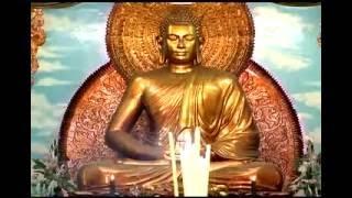 Kinh Phước Đức 3: Hành xử và quan hệ (Điều phước lành 5-6) (26/07/2008) - Thích Nhật Từ