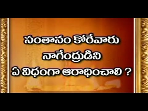 Lord Nagendra Swami Puja Santana Mantras | Dharma sandehalu - Episode 540_Part 3