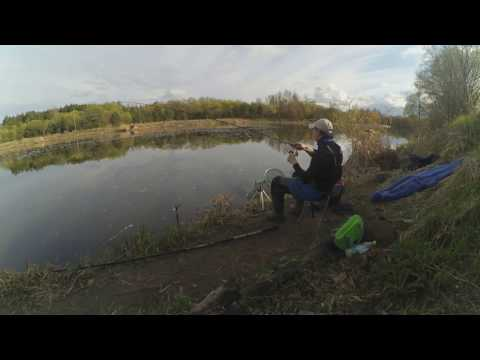 ловля на фидер река вятка