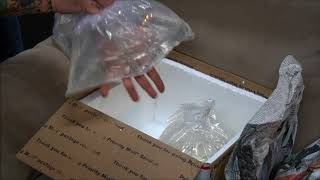 Native Fish Unboxing -A day in the life of a Fish Pimp by Rachel O'Leary