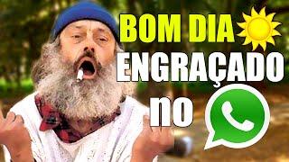 Video Mensagem de Bom Dia para Grupo Whatsapp Engraçado Mal Humor