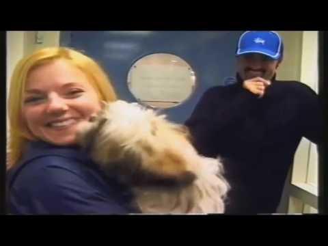 george michael: la sua generosità e il suo amore per gli animali