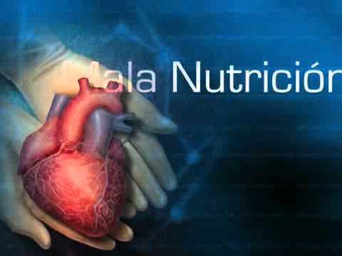 Medicina y Nutrición Ortomolecular