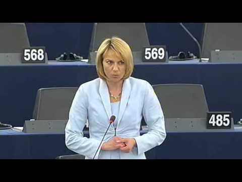 Биляна Раева, евродепутат през мандата 2007-2009