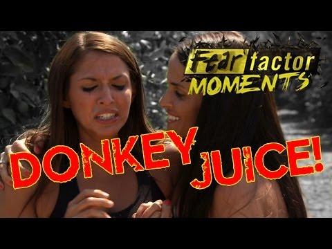 Fear Factor Moments | Donkey Juice (видео)