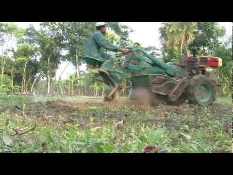 comment gagner agricola