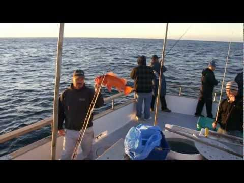Gig fishing for Rock Fish