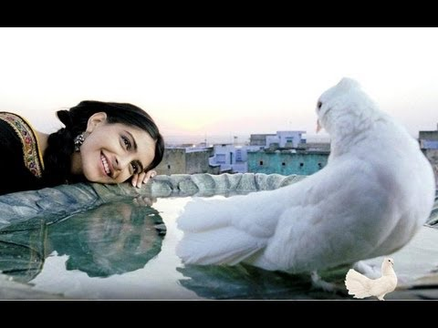 Rehna Tu Full Song | Delhi 6 | Abhishek Bachchan, Sonam Kapoor