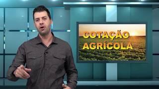 Capa do vídeo Paraná deve parar de vacinar contra aftosa em 2019